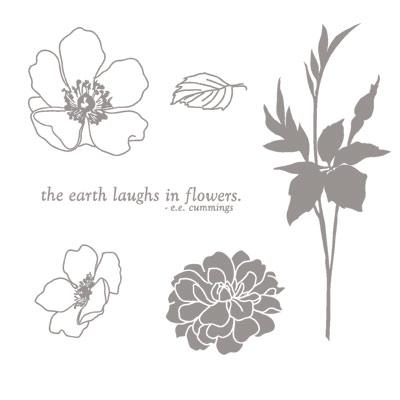 Fabulous florets images